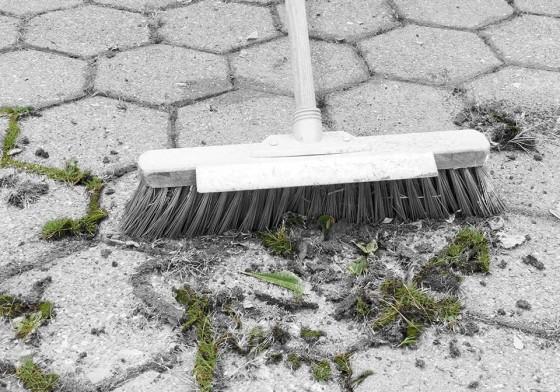 Servicios juan jos fernandez jardiner a paisajismo for Jardineria huelva