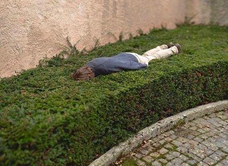 jardinear cansa
