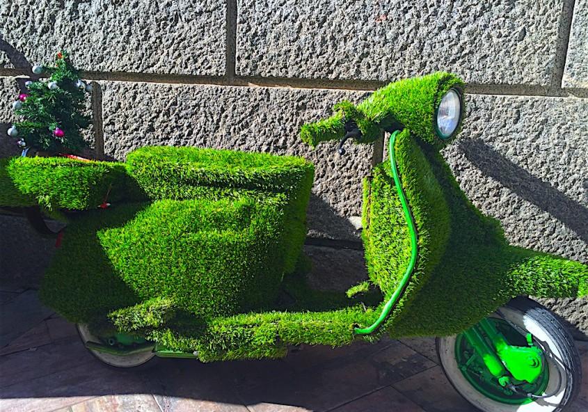 Blog for Jardineria huelva